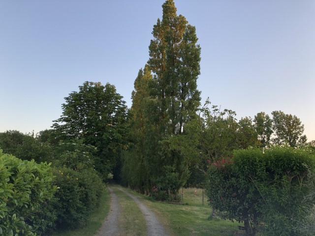 Aire camping-car à Mormaison (85260) - Photo 4